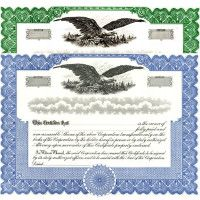 Formalize each shared record your company sells. Get custom Stock Certificates online. We print and ship. Fill out and distribute. Blumberg Manufacturing.