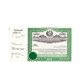 Incorporate in Missouri? Formalize each shared record your company sells. Order certificates online. We ship blank, paper templates for distribution. Beautifully lithographed, state specific series by Goes.