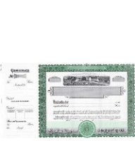 Beautiful, long form stock certificates represent claims on ownership for shareholders in the agricultural industry. Formalize stake in a farm or other agribusiness venture.