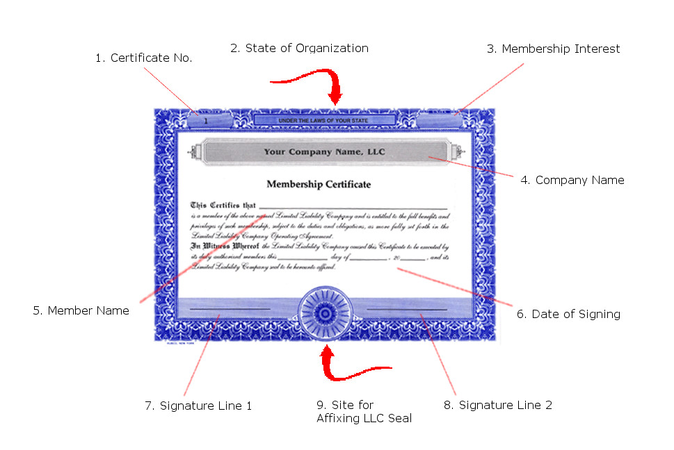How To Fill Out an LLC Membership Certificate, Example
